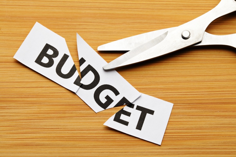 Fleet Year End Budget: what are the trends?