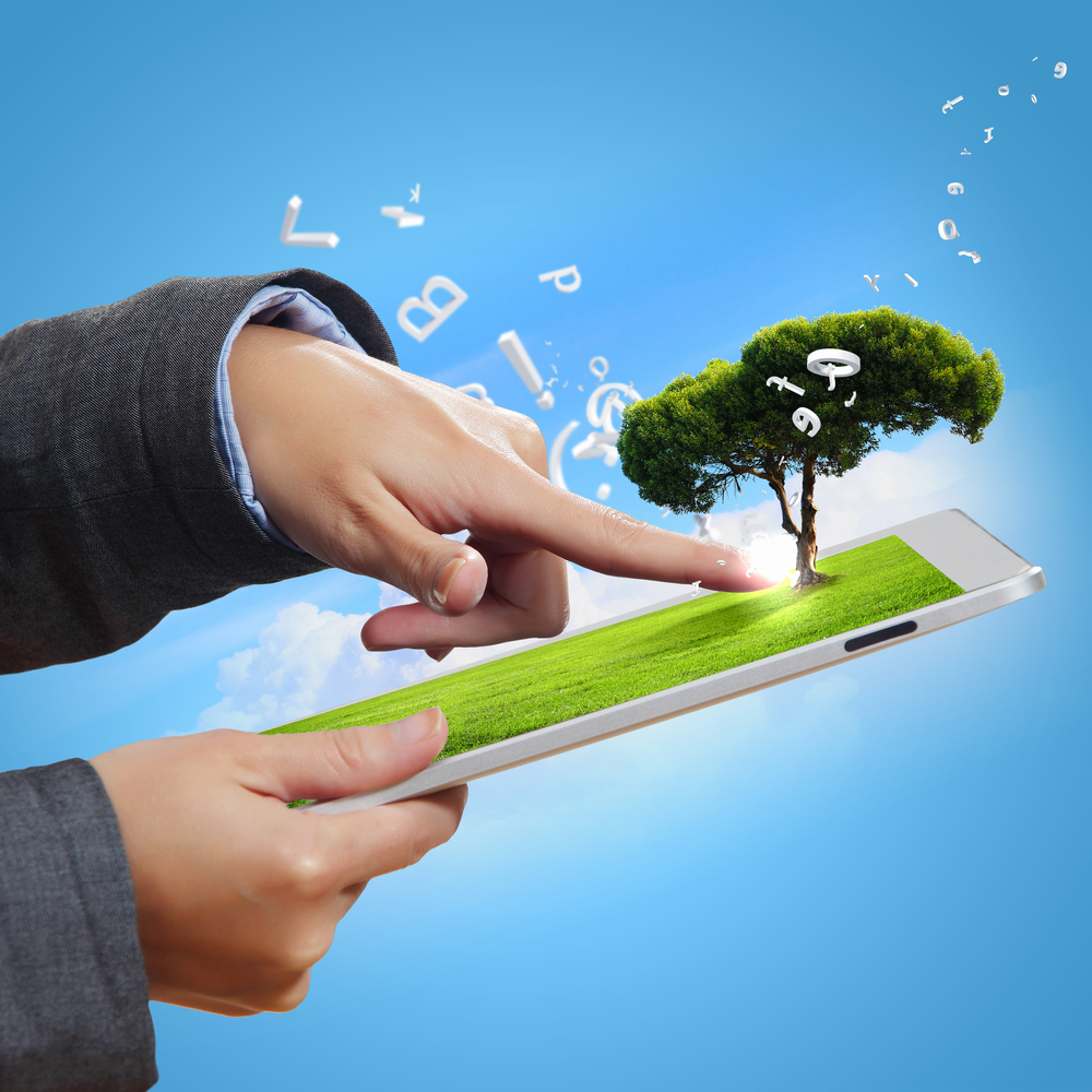 Sustainable procurement policy: how to strengthen sustainable fleet management