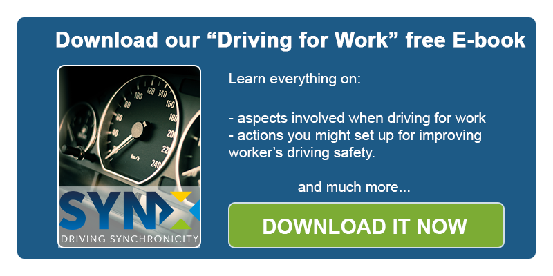 SynX driving for work ebook