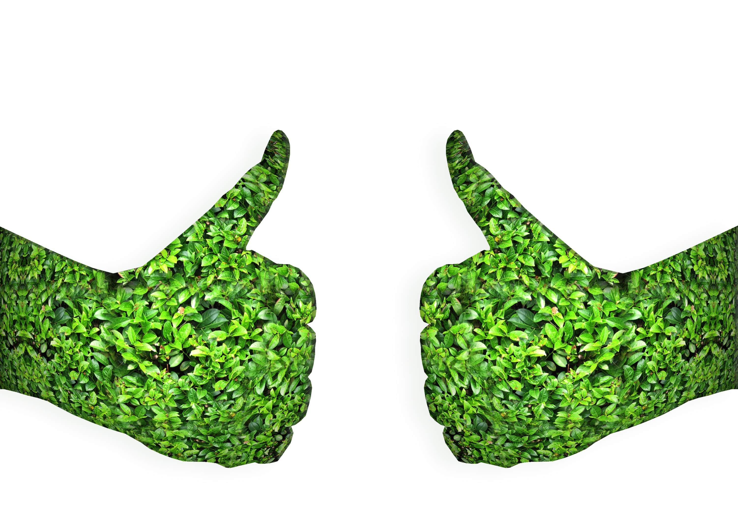 Objectif_CO2-Pour_une_flotte_eco-responsable.jpg