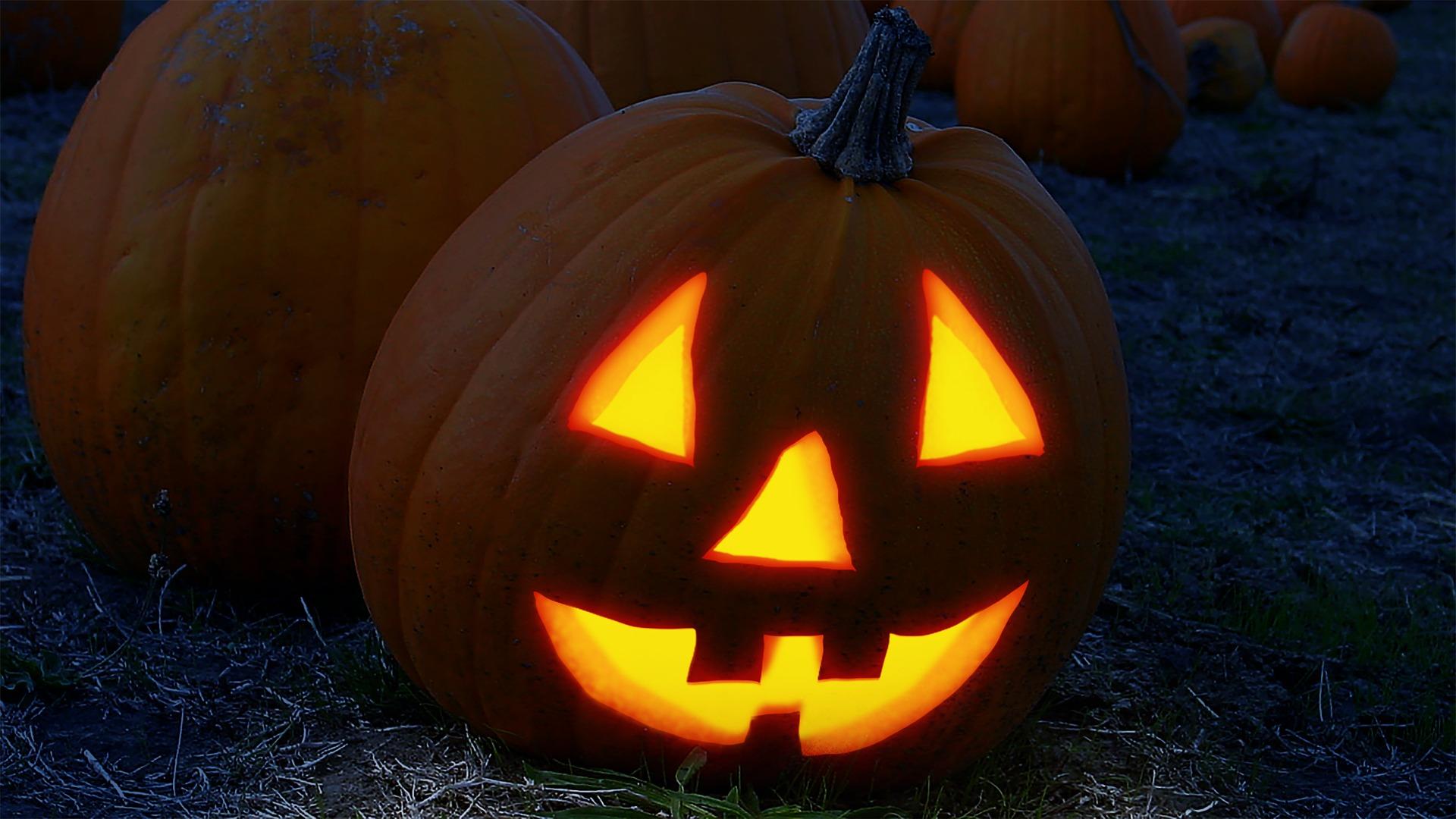 Les chauchemars pour tout gestionnaire de flotte edition Halloween